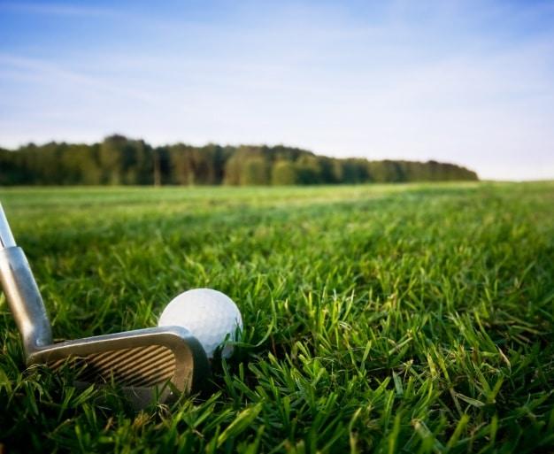 sac de golf Wilson